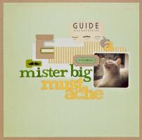 Mister Big Mustache